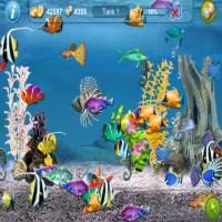 tapfish (200 x 200)