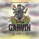 garvin_up_in_the_air_200x200