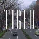 tiger_200x200