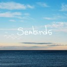 nataniel_noton_freeman_seabirds_200x200