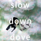 slow_down_love_200x200